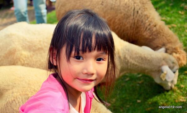 Angela319♥Taiwan第8個鄉鎮-南投 仁愛