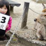 Angela319♥Taiwan國外親子遊第3個城市-關西 奈良day7(東大寺 春日荷茶屋 奈良公園)