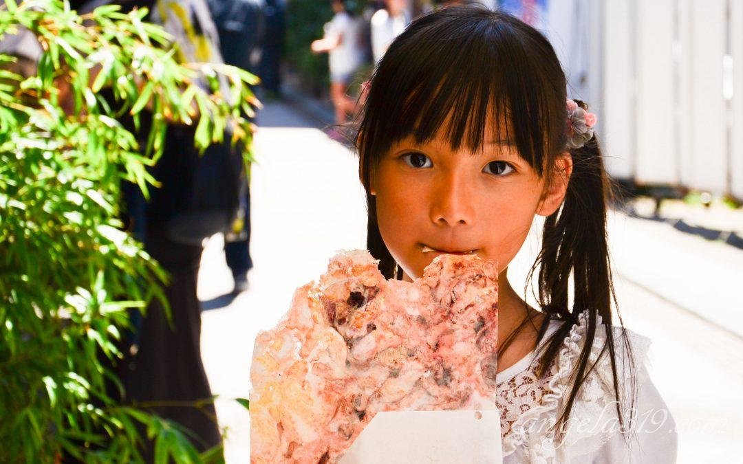 Angela319♥Taiwan國外親子遊第7個城市-神奈川  day8 鎌倉 江之島一日遊